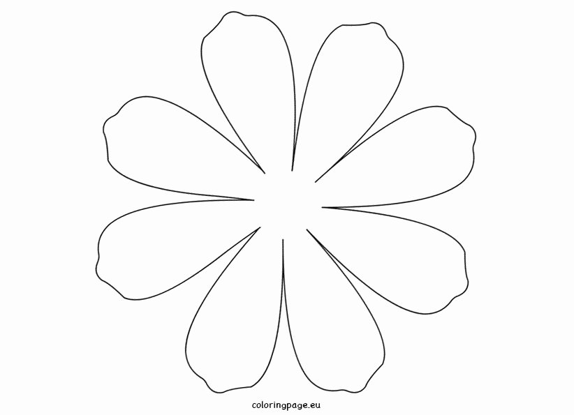 Large Flower Petal Template Luxury Daisy Petal Template