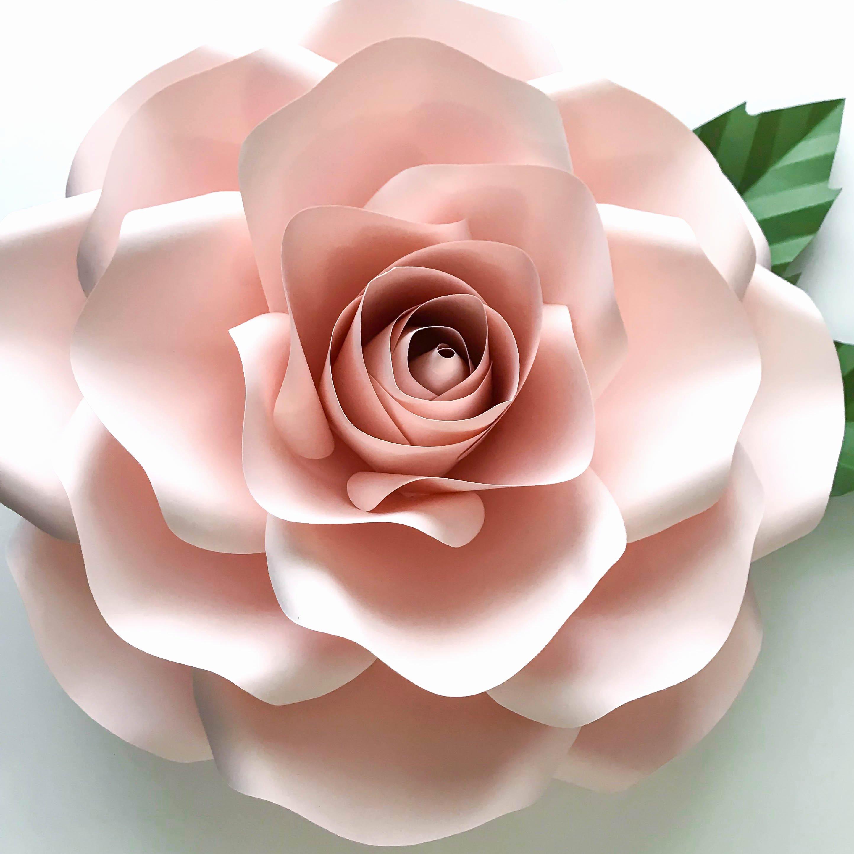 Large Rose Paper Flower Template Elegant Paper Flowers Pdf Bo Of and Medium Rose Paper