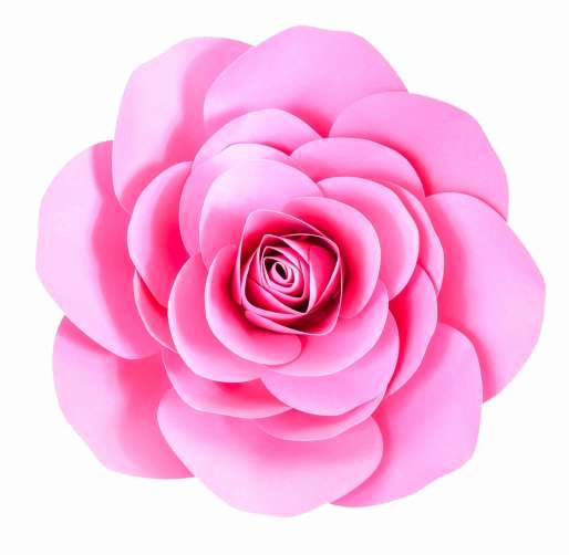 Large Rose Paper Flower Template Lovely Free Paper Rose Template Diy Camellia Rose Tutorial