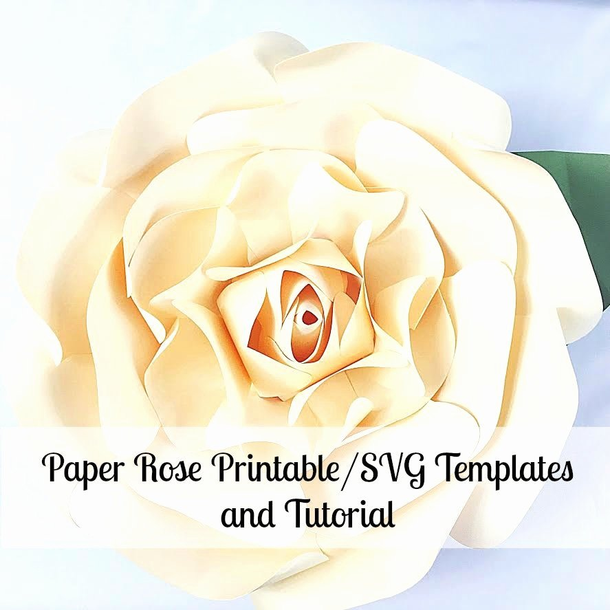 Large Rose Paper Flower Template Lovely Paper Flowers Giant Paper Flowers Printable Rose