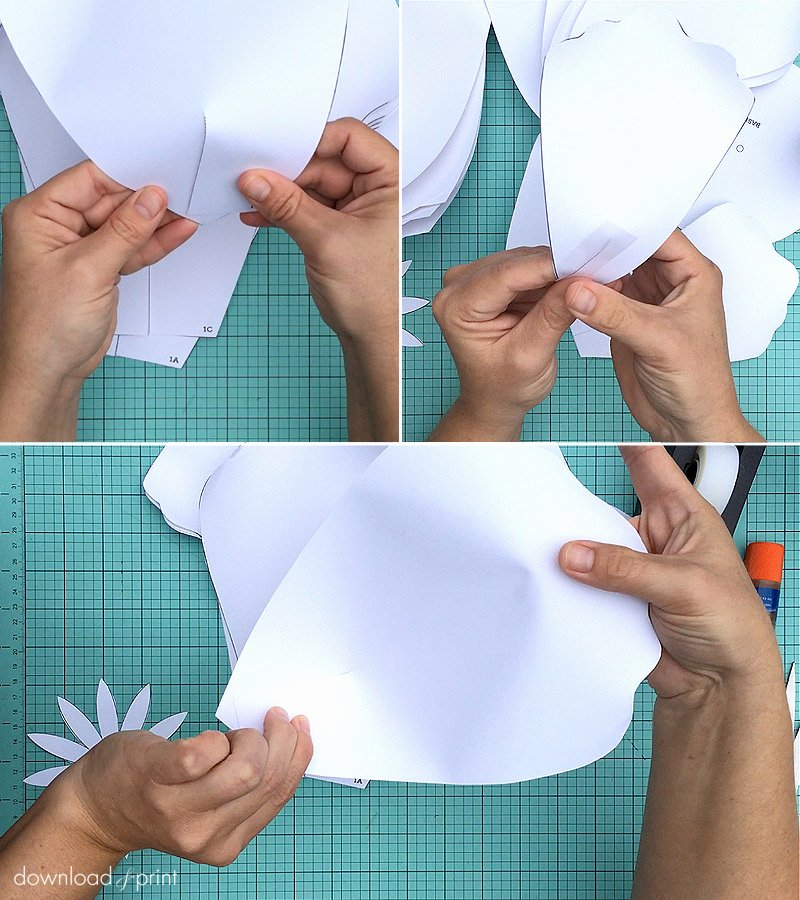 Large Rose Paper Flower Template Luxury How to Make Giant Paper Roses Plus A Free Petal Template