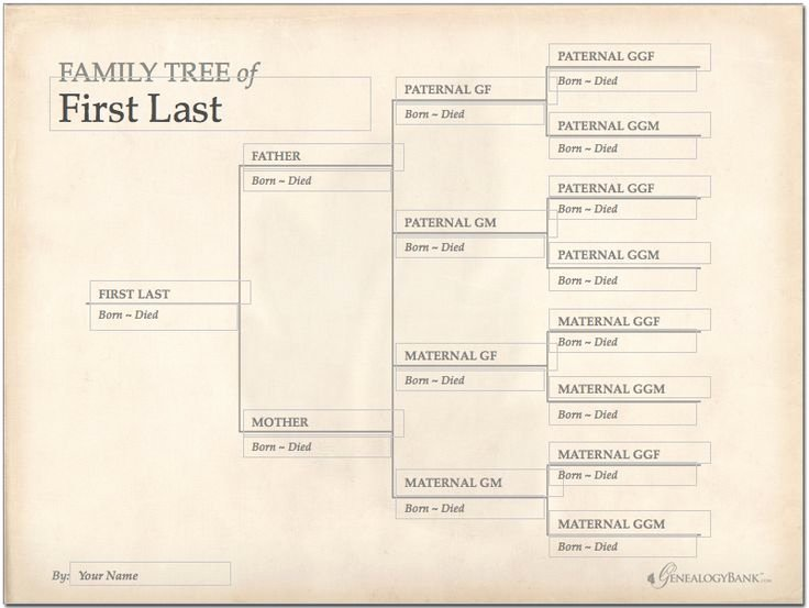 Large Tree Template Lovely 228 Best Images About Genealogy Charts forms and
