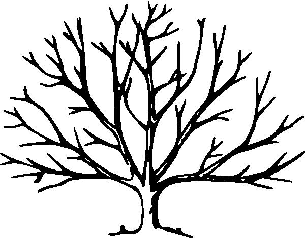 Large Tree Template Lovely Tree with No Leaves Clip Art at Clker Vector Clip