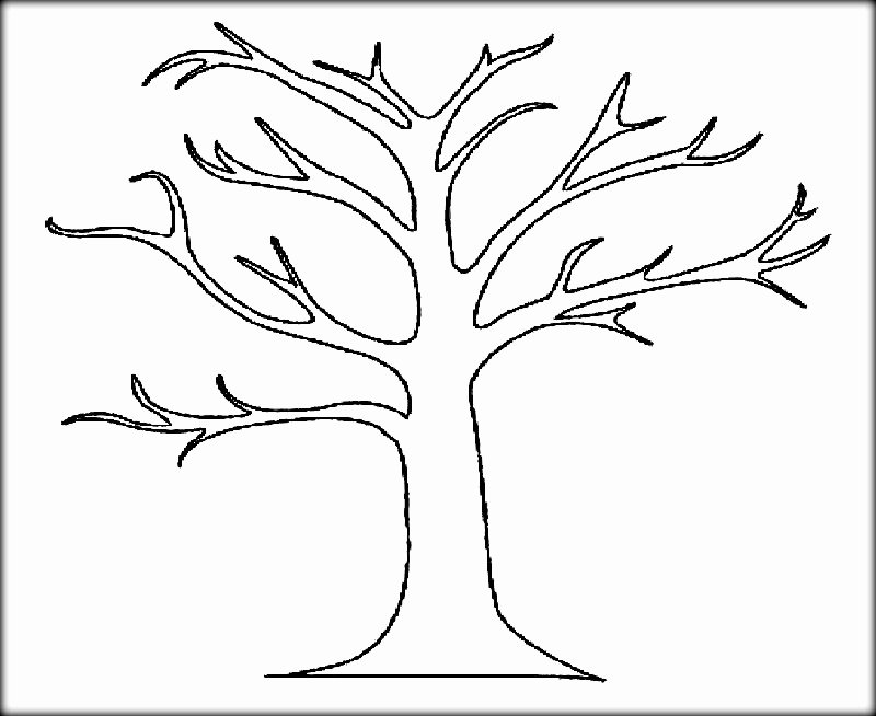 Large Tree Template Luxury Big Tree No Leaves Coloring Coloring Pages