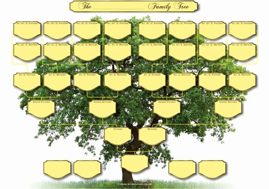 Large Tree Template New Blank Family Tree Charts