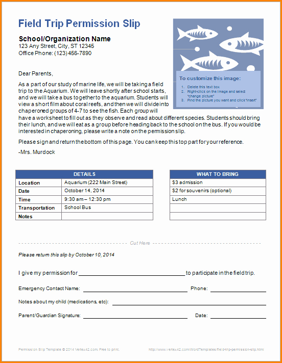 Lds Youth Permission Slip Lovely 7 Free Permission Slip Template
