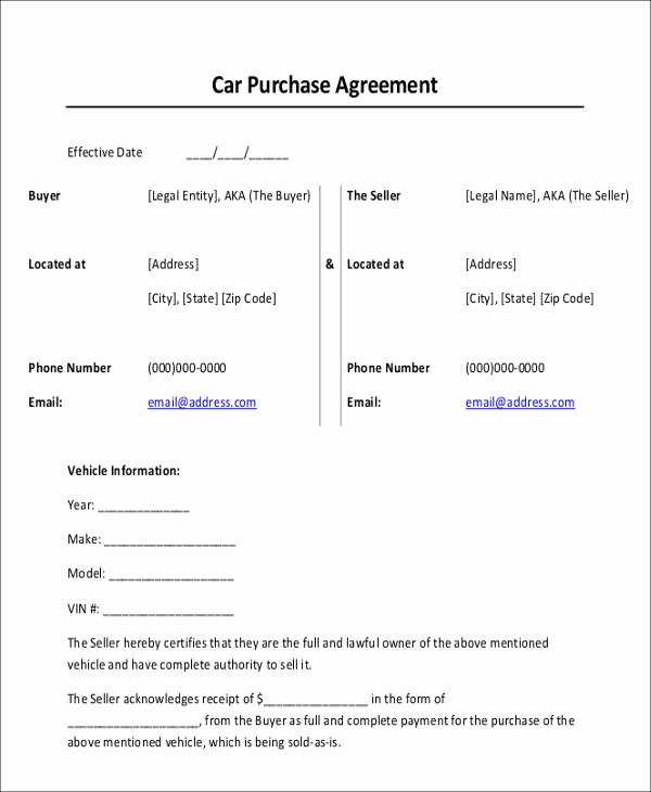 Legal Receipt Of Payment Template Lovely Car Payment Receipts 9 Examples In Word Pdf
