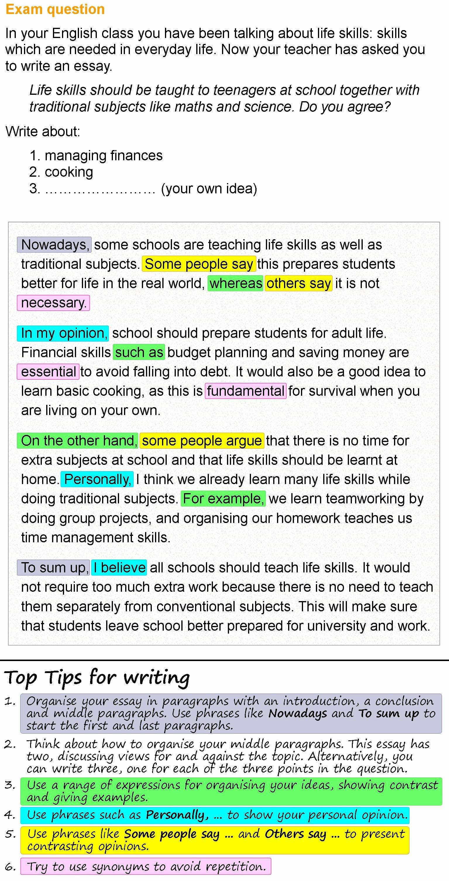 Life Lesson Essay Examples Unique Life Skills Essay