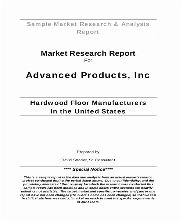 Market assessment Template Beautiful 33 Market Analysis Templates
