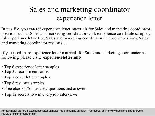 Marketing Coordinator Cover Letter Lovely Sales and Marketing Coordinator Experience Letter