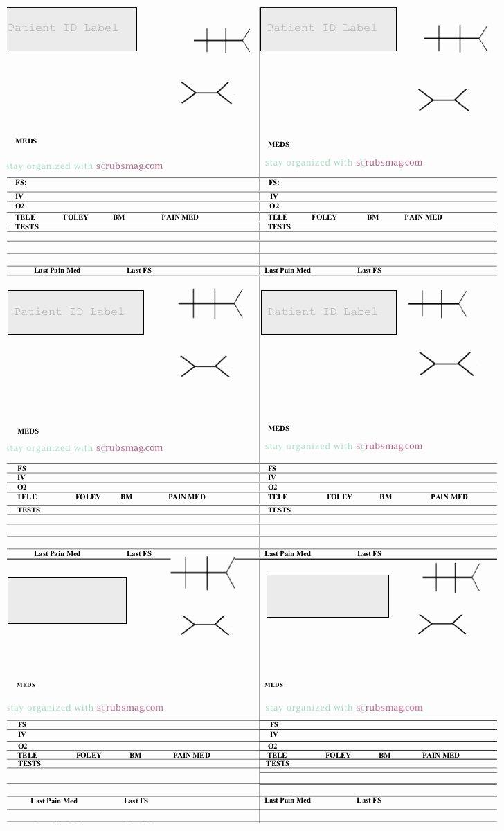 Med Surg Report Sheet New Nurse Med Surg Brain Sheet Notecards