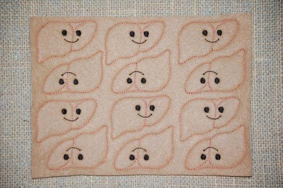 Medical Face Sheet Lovely Liver Blank Face Ribbon Embroidered Medical Feltie Sheet