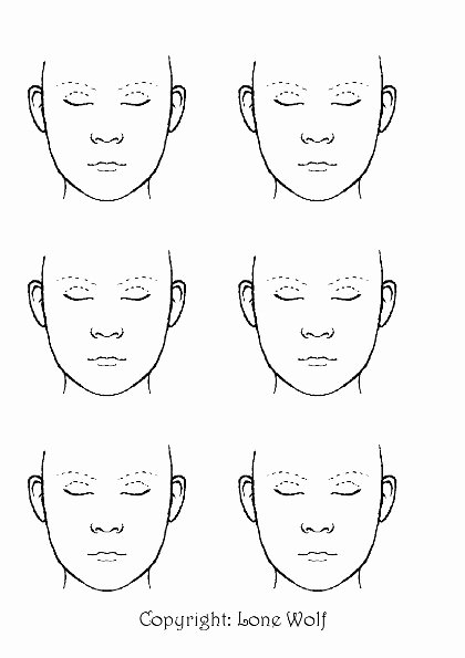Medical Face Sheet Template Best Of Looking for the Printable Blank Faces
