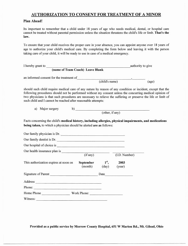 Medical Release form for Babysitter Inspirational Best S Of Printable Medical Consent form Free
