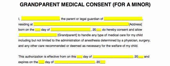Medical Release form for Babysitter Lovely Grandparents' Medical Consent form – Minor Child