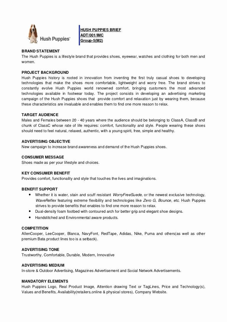 Meeting Brief Template Best Of Creative Brief Example