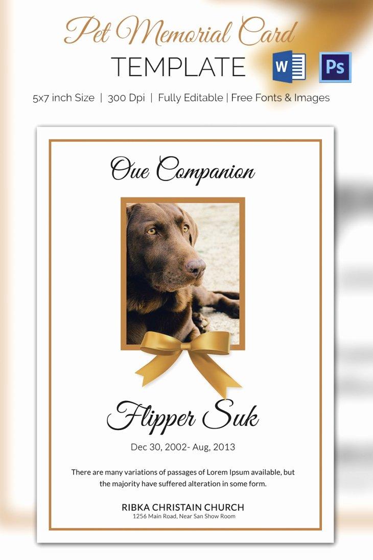 Memorial Card Template Free Download Elegant 5 Pet Memorial Card Template Word Psd Pages