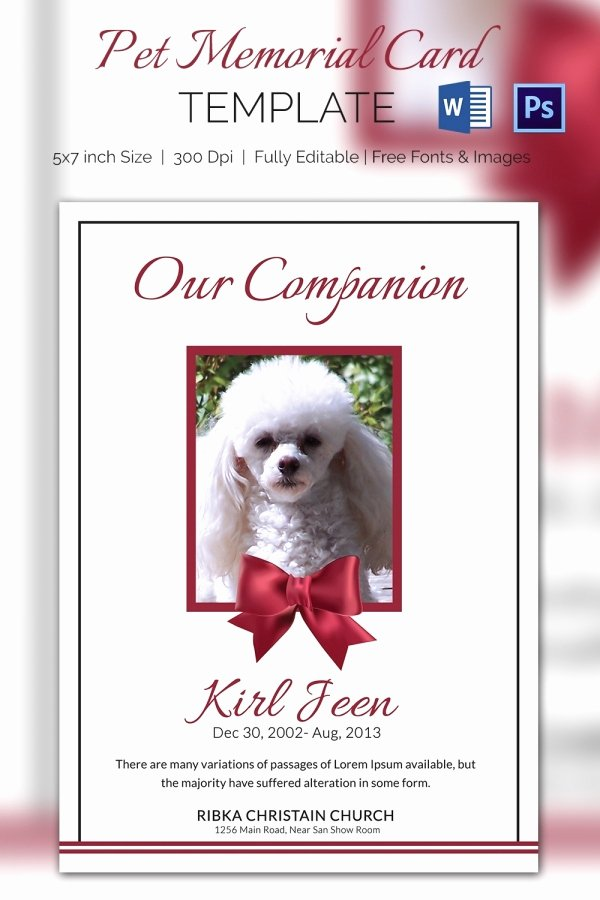 Memorial Cards for Funeral Template Free Unique Pet Memorial Card 5 Word Psd format Download