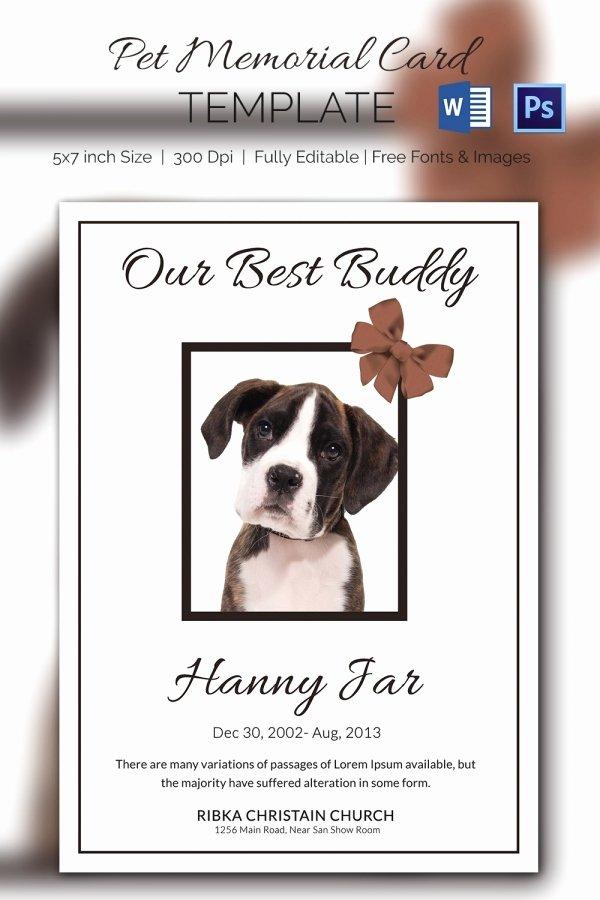 Memorial Cards Template Free Elegant 15 Pet Memorial Card Designs & Templates Psd Ai