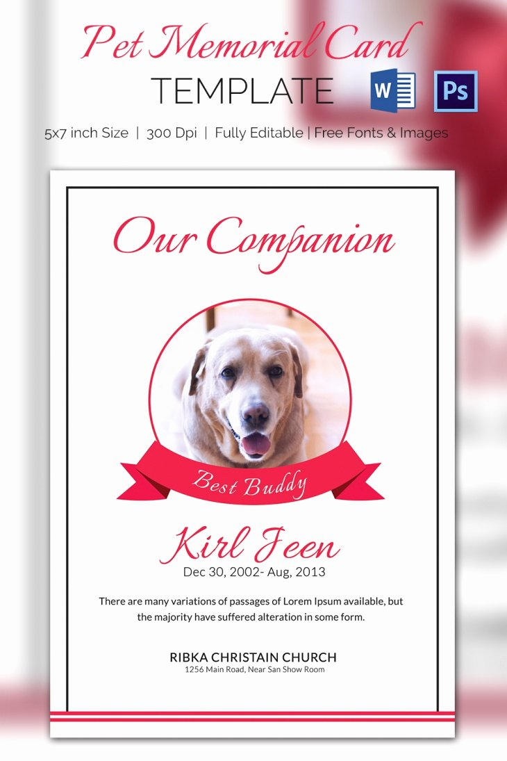 Memorial Cards Template Free Fresh 5 Pet Memorial Card Template Word Psd Pages