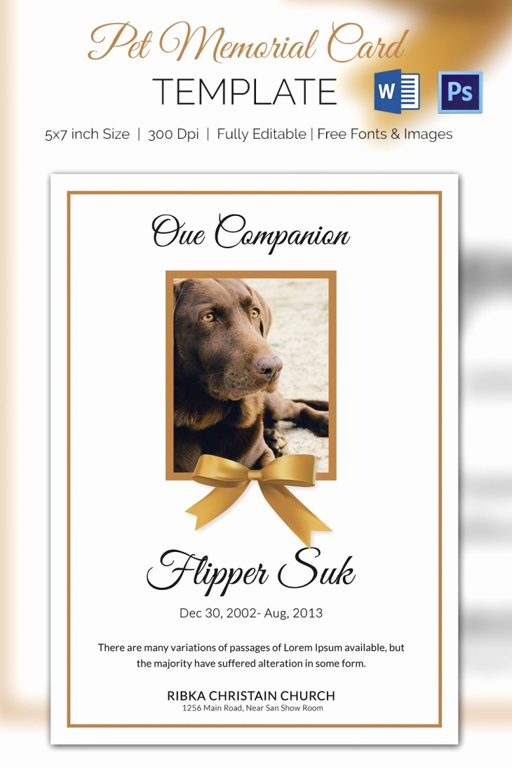Memorial Cards Template New 5 Pet Memorial Card Template Word Psd Pages