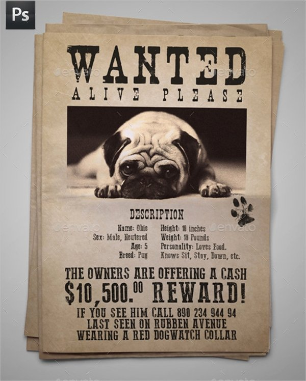 Missing Dog Template Awesome 12 Missing Poster Templates Free Psd Eps Ai format