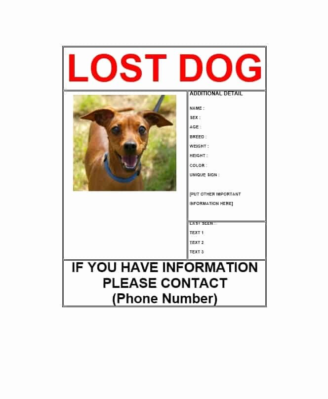 Missing Dog Template Beautiful 40 Lost Pet Flyers [missing Cat Dog Poster] Template