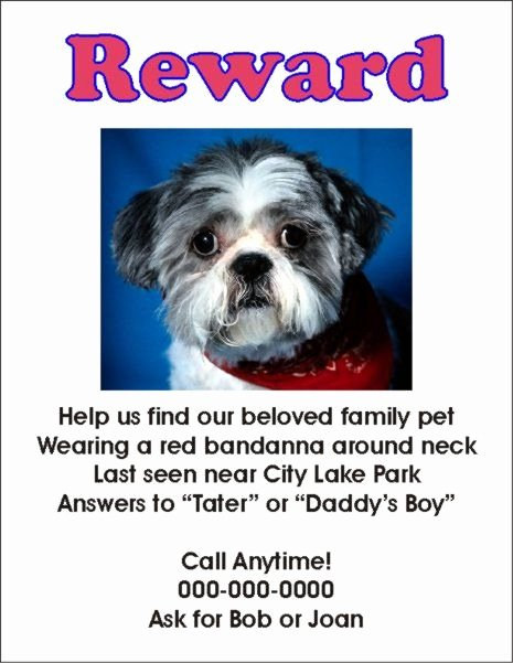 Missing Dog Template Beautiful Flyers for Missing Pets In Texas Whith A Reward