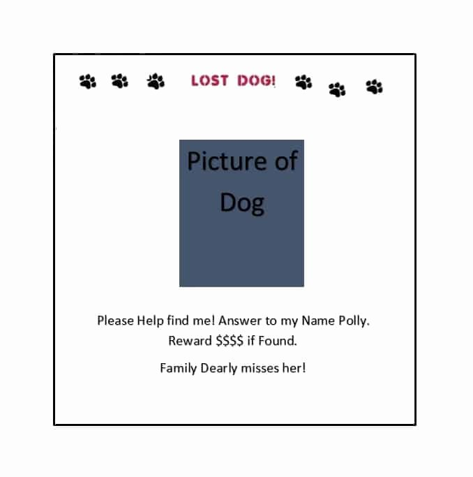 Missing Dog Template Best Of 40 Lost Pet Flyers [missing Cat Dog Poster] Template