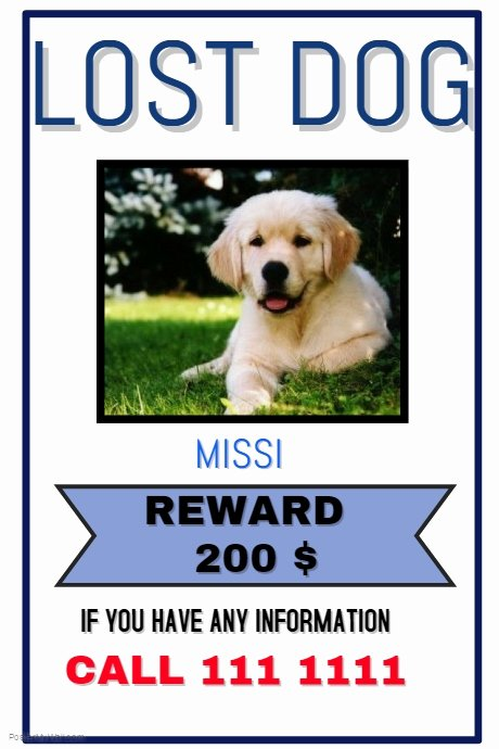 Missing Dog Template Fresh Lost Pet Template