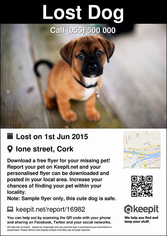 Missing Dog Template New 20 Lost Pet Flyers Word Psd Ai Vector Eps