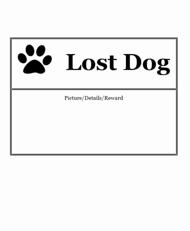 Missing Dog Template Unique 40 Lost Pet Flyers [missing Cat Dog Poster] Template