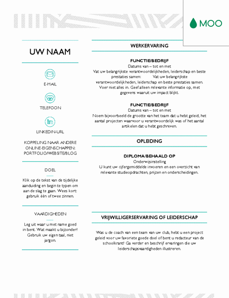 Moo Resume Templates Beautiful Moo Resume Templates