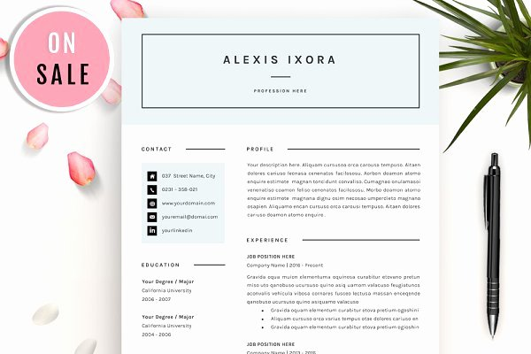 Moo Resume Templates Lovely Resume Templates Creative Market