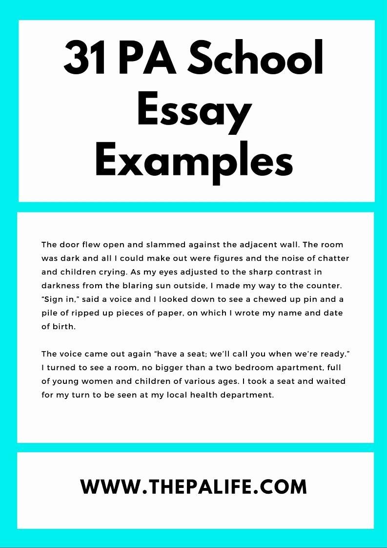My Neighborhood Essay Example Fresh Best 25 Sample Essay Ideas On Pinterest