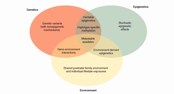 Nature Vs Nurture Venn Diagram New Library Nu Urang Sunda the Genetic and Epigenetic Basis