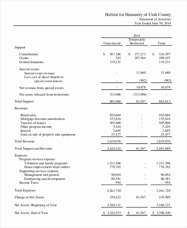 Non Profit Financial Statement Template Excel Beautiful Financial Statement 20 Free Sample Example format