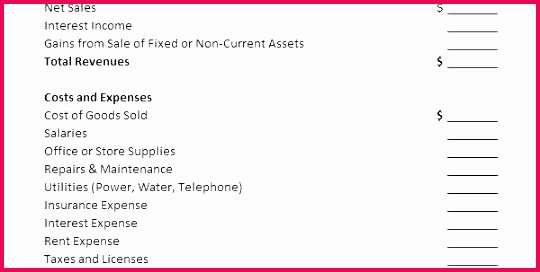 Non Profit Financial Statement Template Excel Fresh 4 Financial Statement Analysis Example