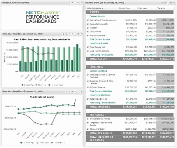 Non Profit Financial Statement Template Excel Fresh Non Profit Balance Sheet Template Excel