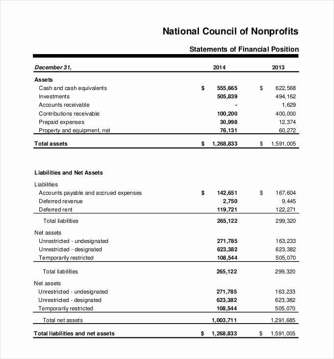 Non Profit Financial Statement Template Excel Lovely 30 Financial Statement Templates Pdf Doc