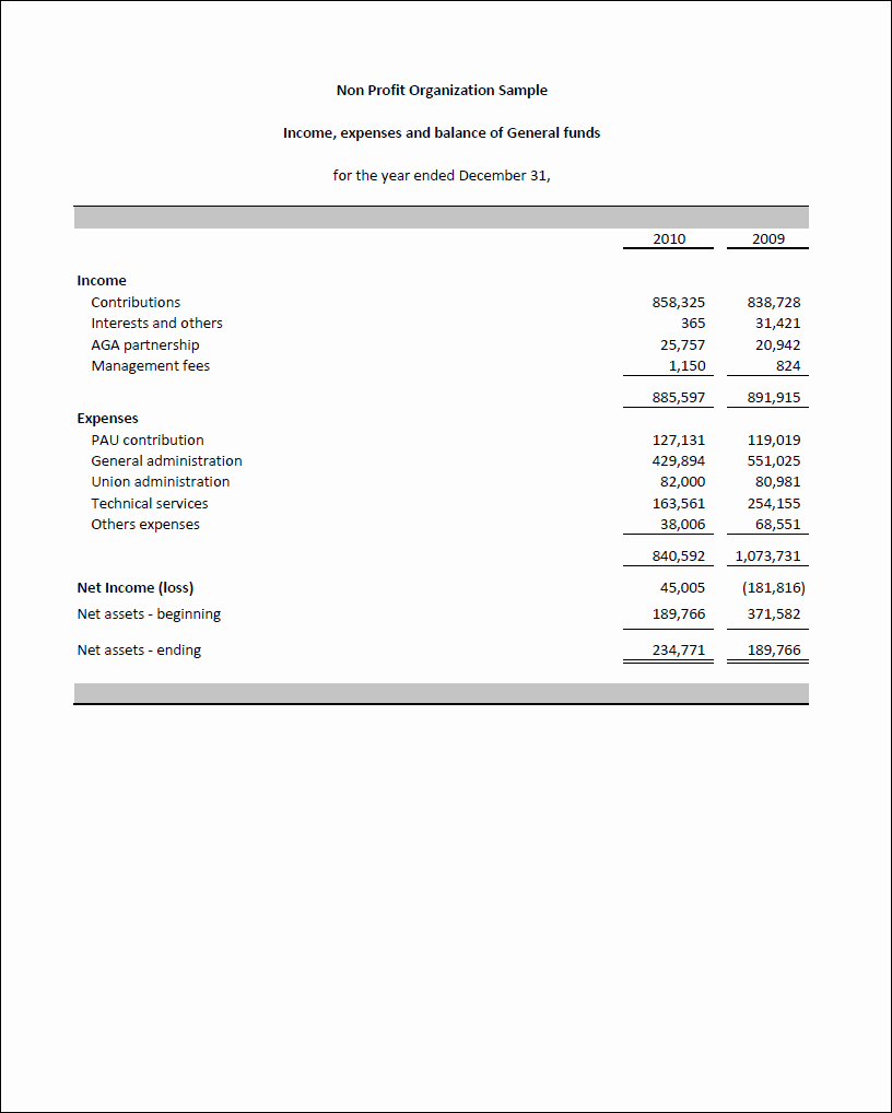 Non Profit Financial Statement Template Excel Lovely Excel Fsm Npo