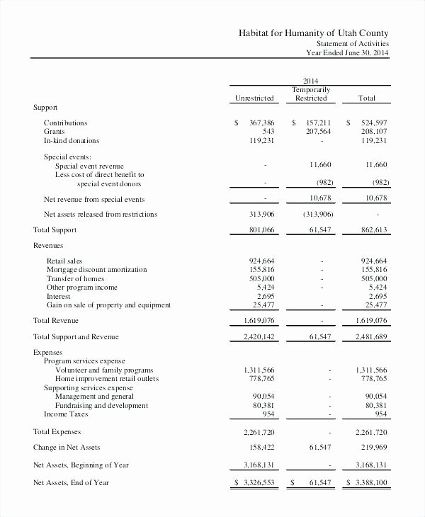 Non Profit Financial Statement Template Excel New Projected In E Statement Template Excel – Ddmoon