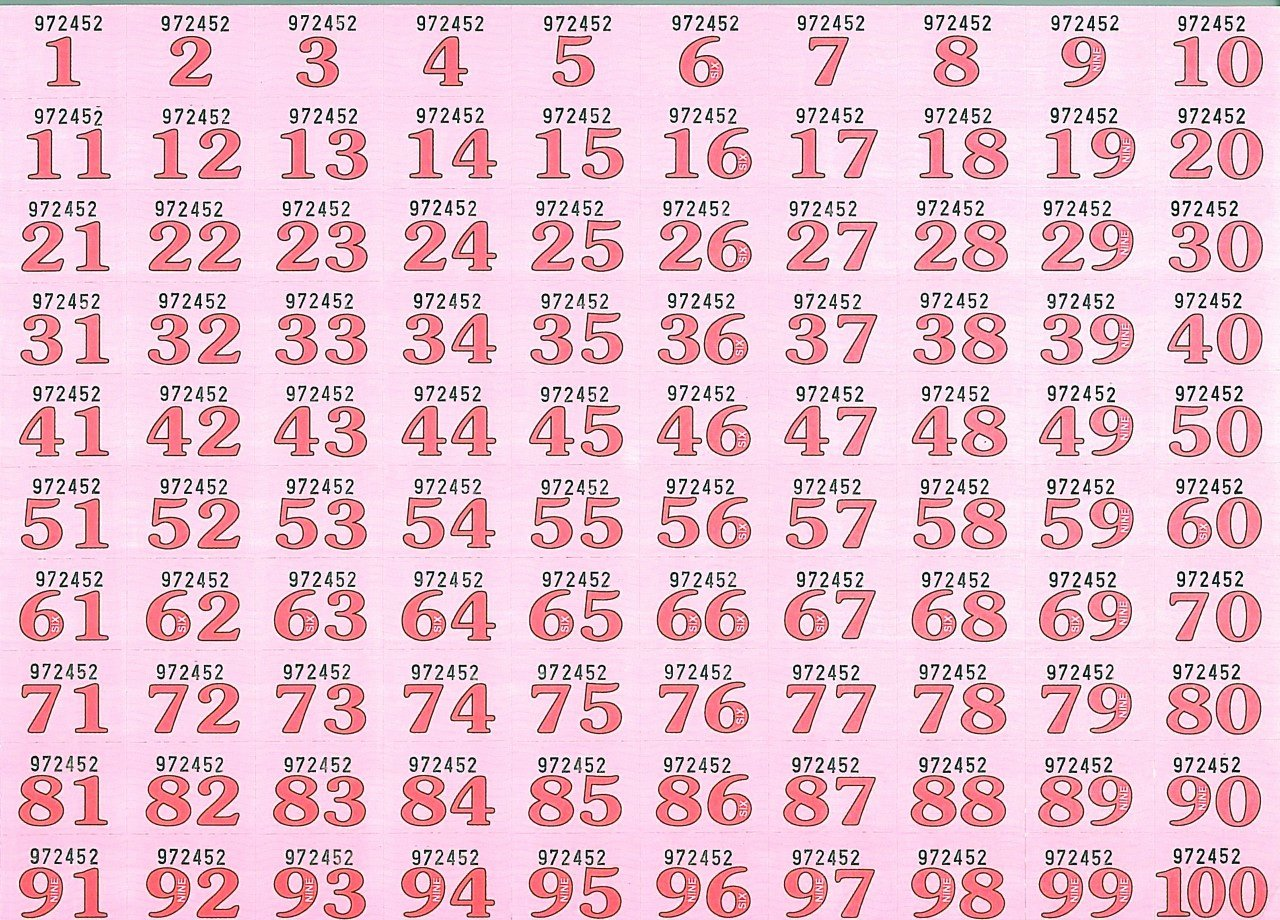 Numbered Raffle Ticket Template Word Best Of Free Numbered Raffle Ticket Template