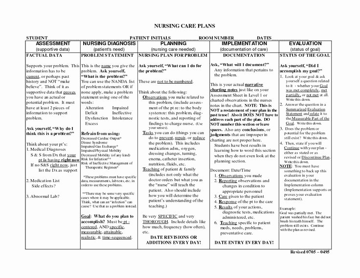 Nursing Education Plan Template Unique Nursing Notes