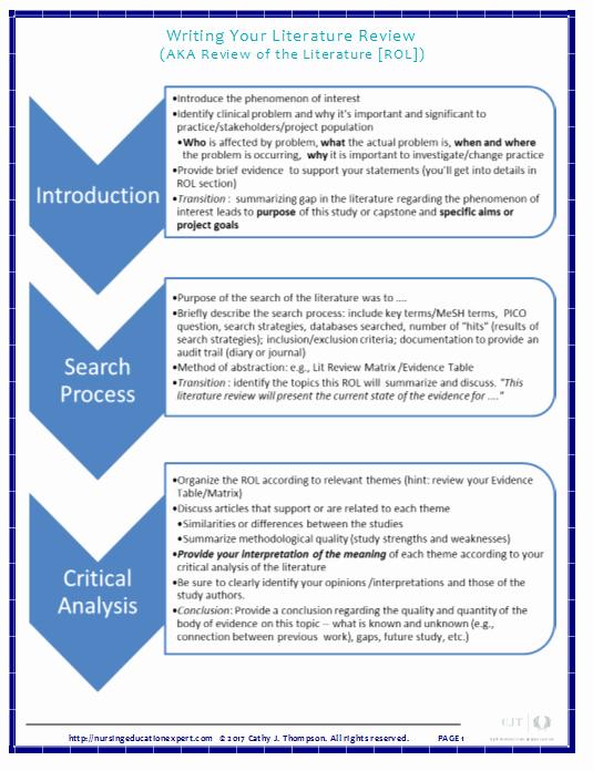 Nursing Peer Review Template Fresh How to Write A Literature Review Nursing Education Expert