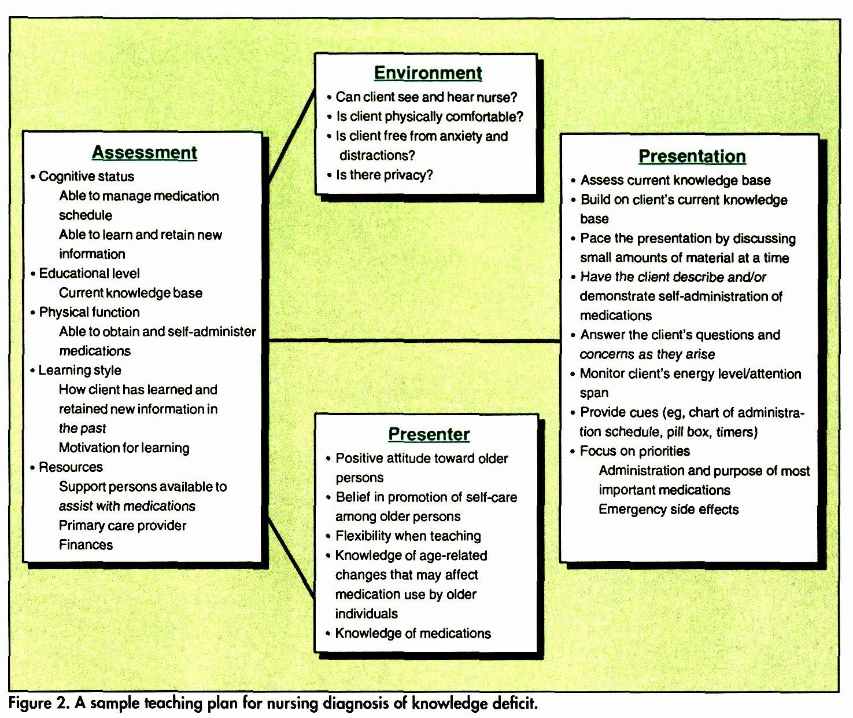 Nursing Teaching Plan Sample Best Of Nursing Process Teaching Elderly Clients