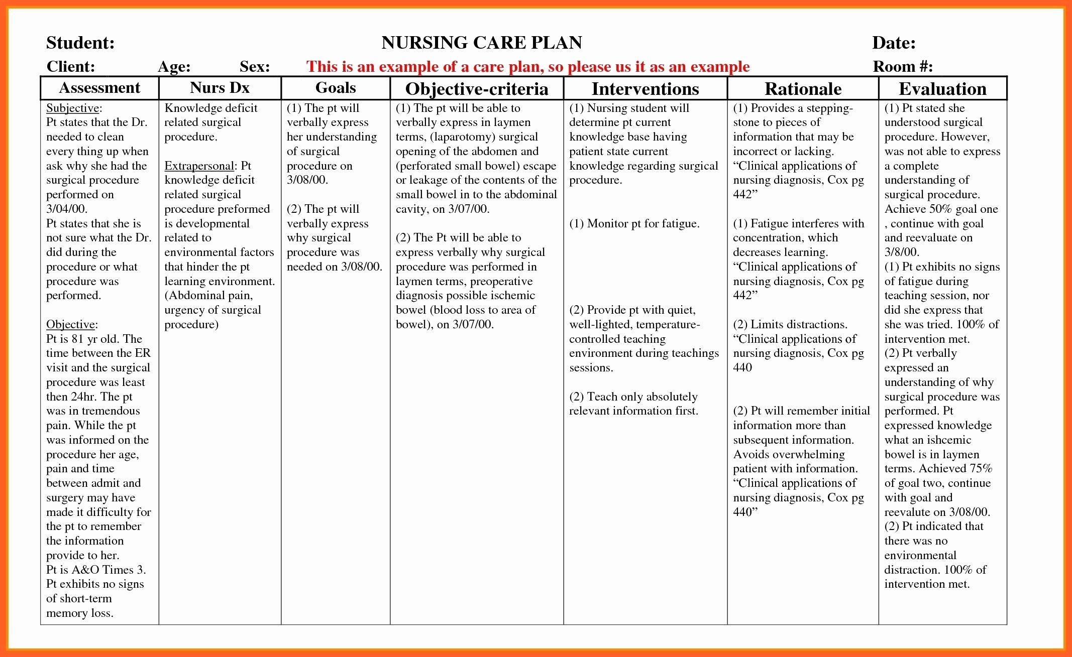 Nursing Teaching Plan Template Awesome Example Care Plan Template for Elderly Nursing Home