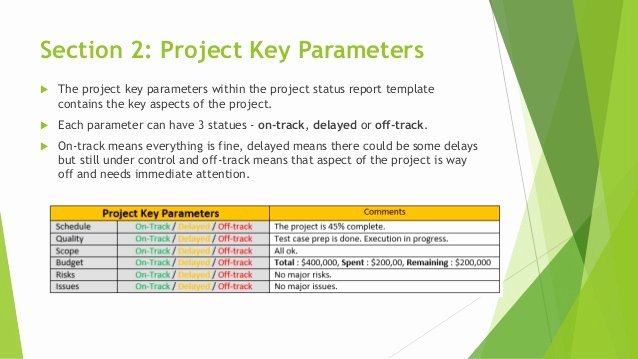 One Page Project Summary Best Of E Page Effective Project Status Report