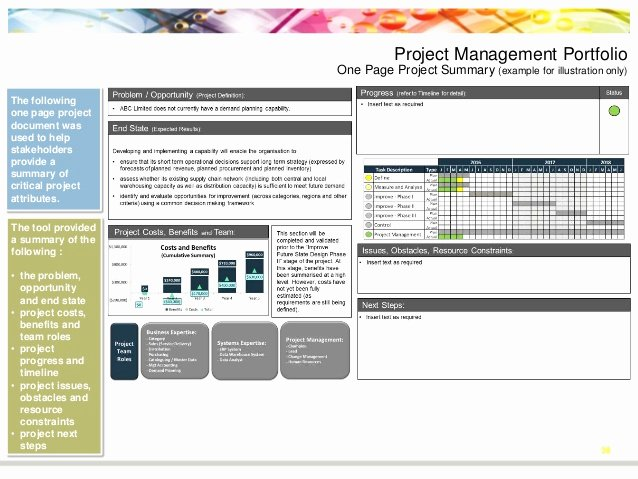 One Page Project Summary Best Of Process Improvement and Project Management Portfolio