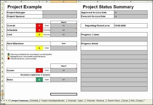 One Page Project Summary Elegant Project Management Report From Project Management